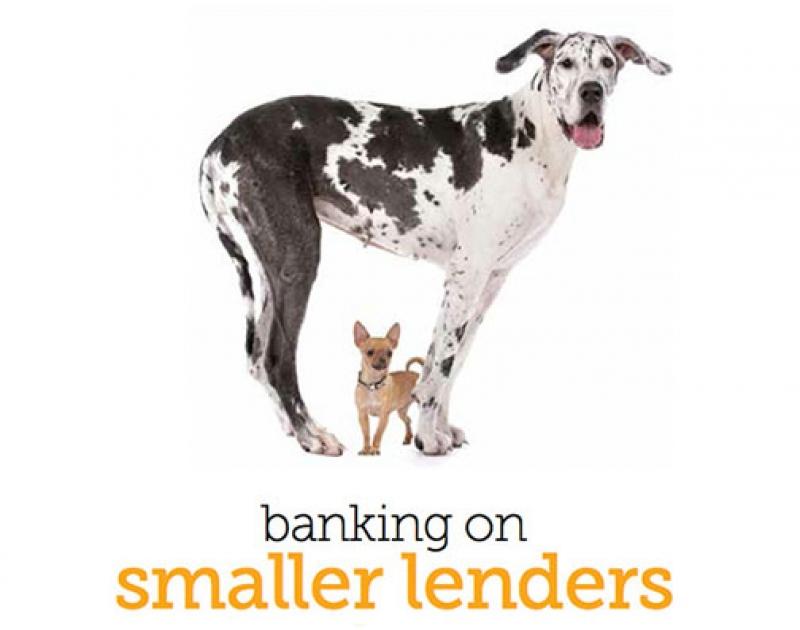 Banking On Smaller Lenders